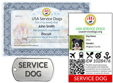Usa Service Dogs Registry Register Your Service Dog Today